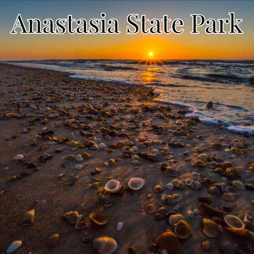 Anastasia state park camping spots in florida sunrise on shelled beach