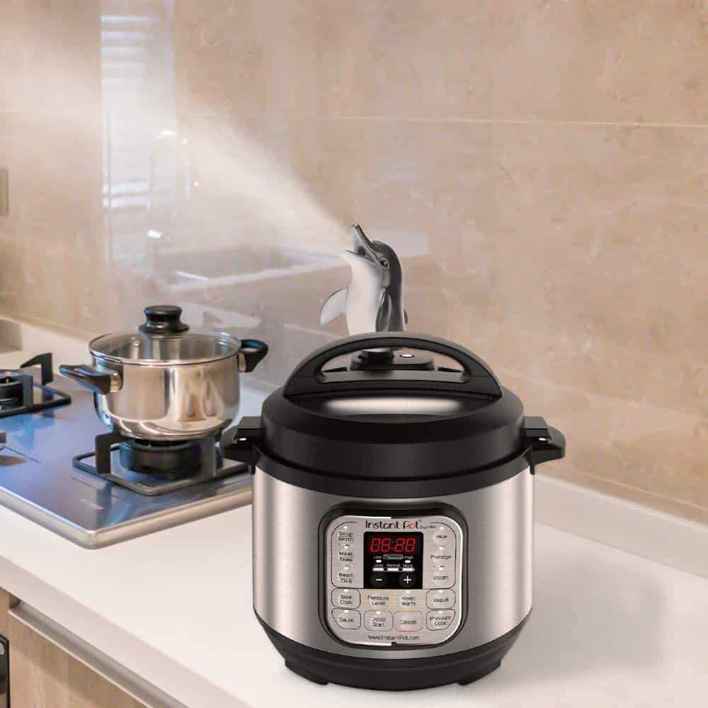 dolphin steam diverter instant pot