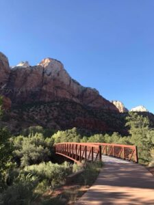 camping and hiking in zion national park