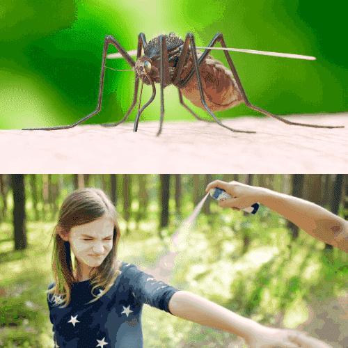 Halt Mosquito Biting Instantly
